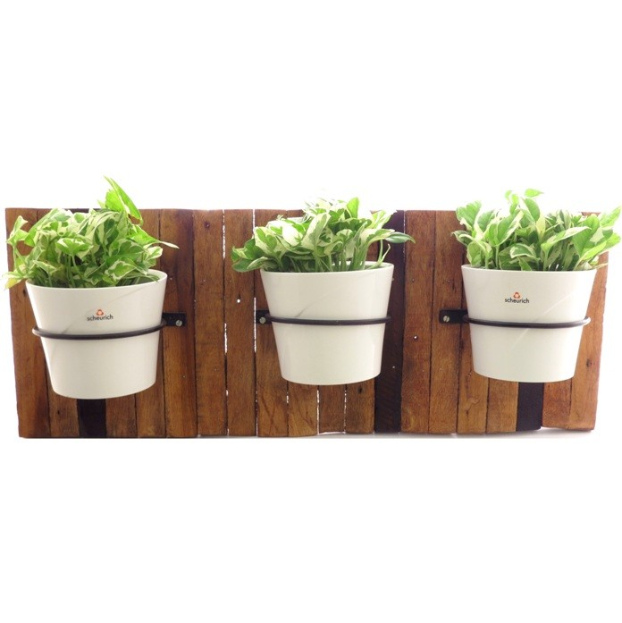Buy Wood Wall Mount Planter Online In India