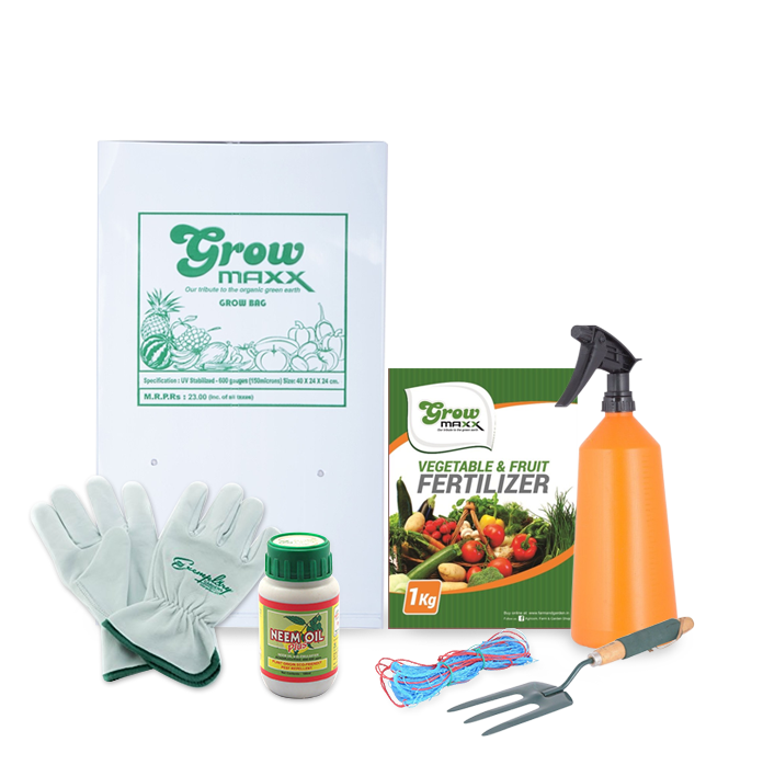 Vegetable Gardening Combo (Climbers) Starter Kit