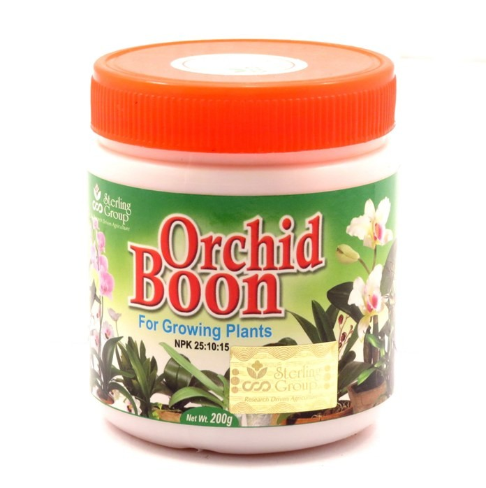 Buy Orchid Boon Growing Online In India Farmandgarden In