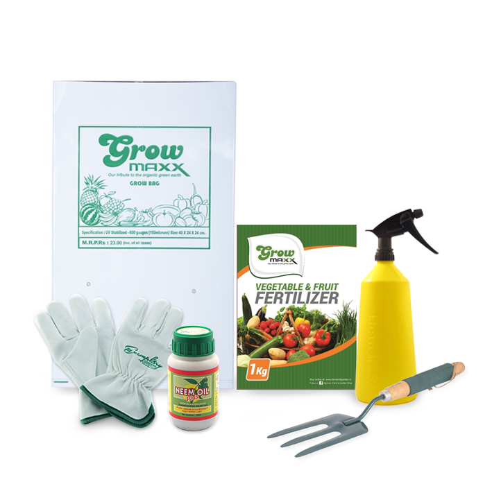 Vegetable Gardening Combo Starter Kit