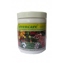 GREEN CARE 13:27:27 225G
