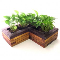 AGRICOM WOODEN L SHAPE BOX